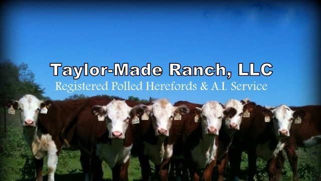 Header Image - Taylor-Made Ranch